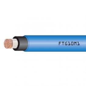 Cavo Resistente al Fuoco 1X25mmq 1 Metro RF31-22 FTG10OM11X25