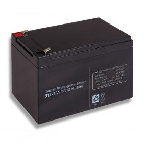 Lead acid battery 12V 12Ah Cobat Included B12V12A