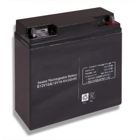 Batteria al piombo 12V 18Ah Cobat Incluso B12V18A