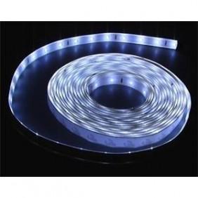 NOBILE STRISCIA LED 5MT 300LED 6000K 24V 70010/F